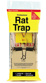 Tapette rats 4 99 - Tapette a rat ...