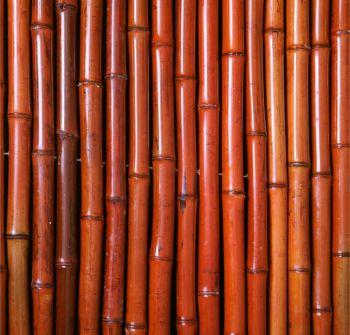 Rouleau de bambou epais rouge papillon x 149 99 for Sol en bambou en rouleau