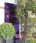 Miroir de jardin en acrylique - Rectangle extra large violet - 1.8m x 1.2m