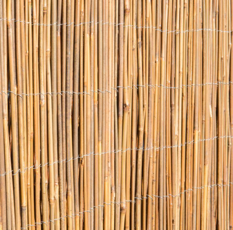 canisse en cannes de bambou papillon 4m x 2m 79 99. Black Bedroom Furniture Sets. Home Design Ideas