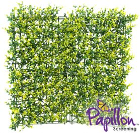Haie Artificielle Carreau de Feuilles de Buis Clair 50x50cm - par Papillon ™ Lot de 2 – 0,5m²