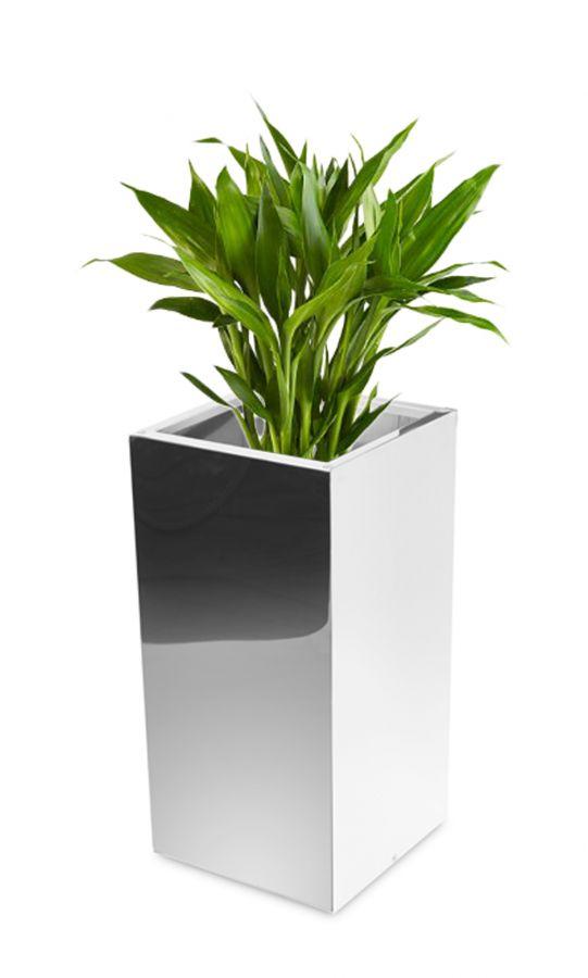 cache pot haut cube en acier inoxydable effet miroir 35cm x 110cm 259 99. Black Bedroom Furniture Sets. Home Design Ideas