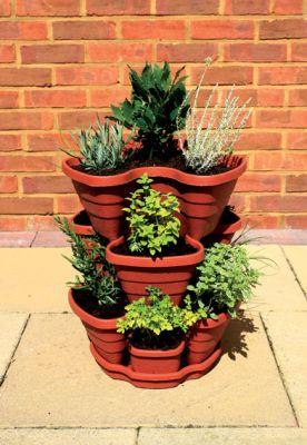 pots fraises et herbes 29 99. Black Bedroom Furniture Sets. Home Design Ideas