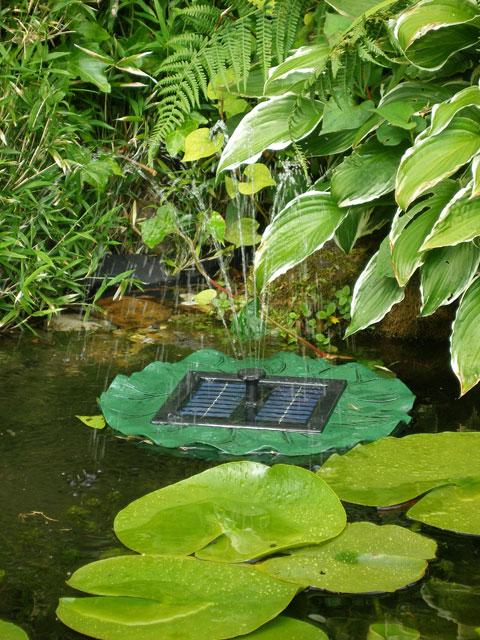 fontaine solaire jet d 39 eau lys flottant 34 99. Black Bedroom Furniture Sets. Home Design Ideas